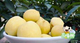 酸野酸桃子怎么泡-甜酸脆桃子的腌制方法