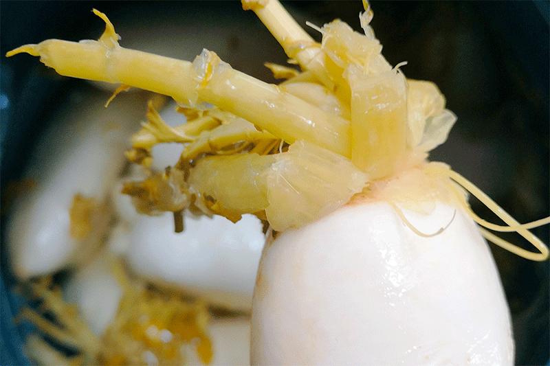 广西酸野调料秘方-广西酸野水果做法教程